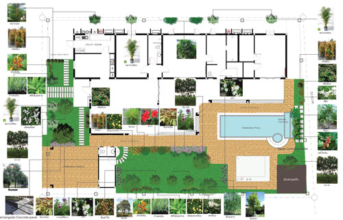 Tropical garden designs and garden plans thai garden design for Domestic garden ideas